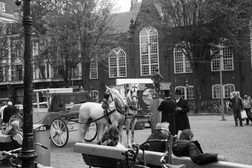Amsterdam-1-von-31