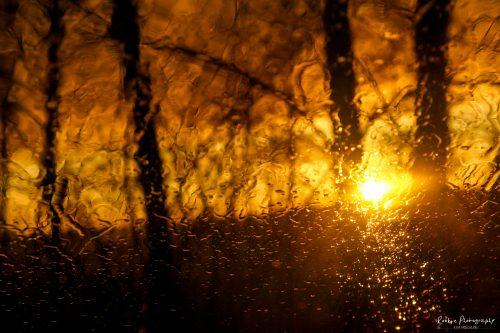 Sunset-3-von-7