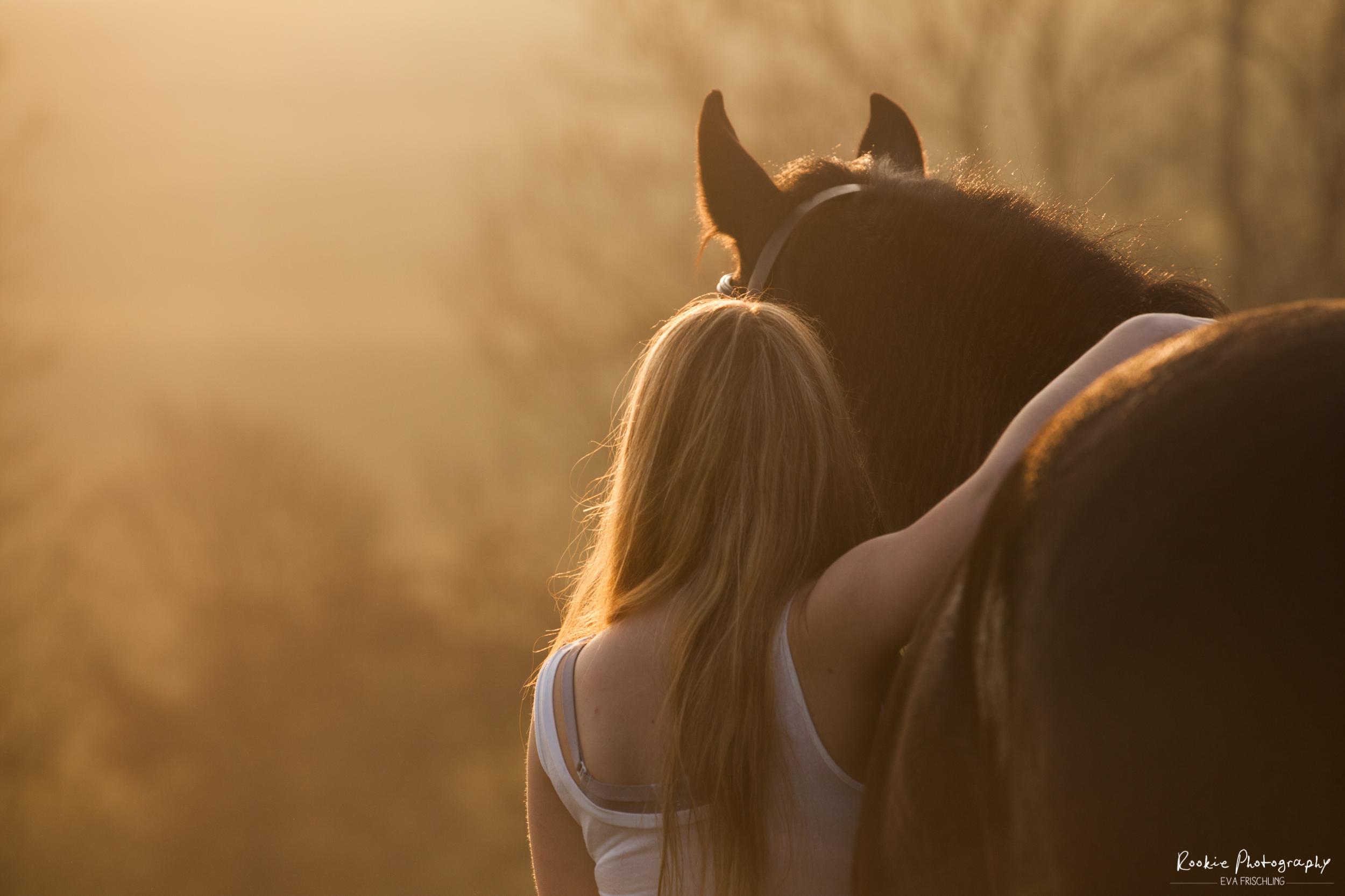 Zum Pferde Stehlen