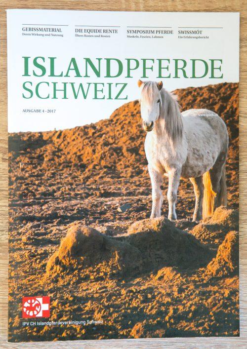 IslandpferdeSchweiz4-17-1