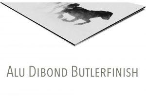 0441 Alu Dibond Butlerfinish