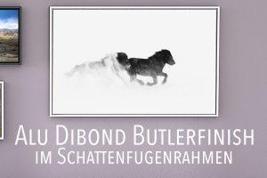 0442 Alu Dibond BF Rahmen