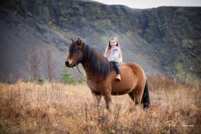 IslandpferdeInIsland-101