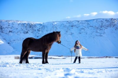 IslandpferdeInIsland-117