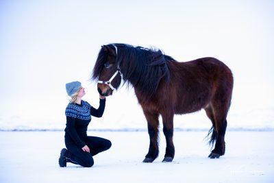 IslandpferdeInIsland-128