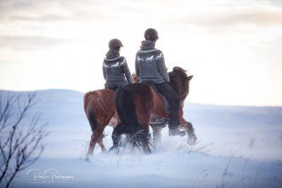 IslandpferdeInIsland-178