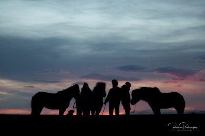 IslandpferdeInIsland-23