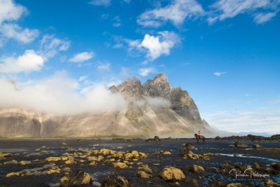 IslandpferdeInIsland-38