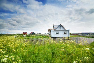 IslandpferdeInIsland-65