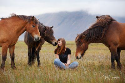 IslandpferdeInIsland-78