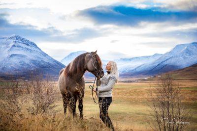IslandpferdeInIsland-95