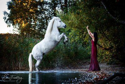 Mensch&Pferd_2019-5
