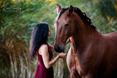 Mensch&Pferd_2019-6