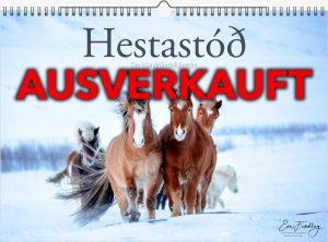 Hestastod2021-A3-0 ausverkauft