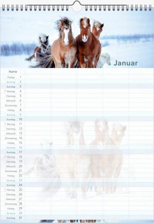 Hestastod2021-Familienplaner-1