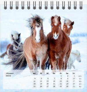 Hestastod2021-Tischkalender-1