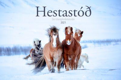 Hestastod2021-0