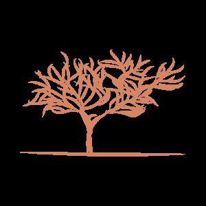 Eva Wandbilder Baum