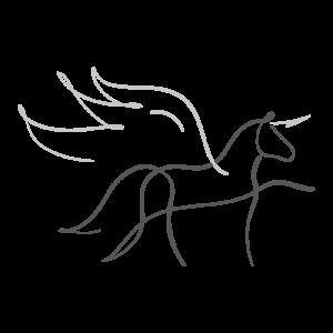 Taktur_magic Pferd