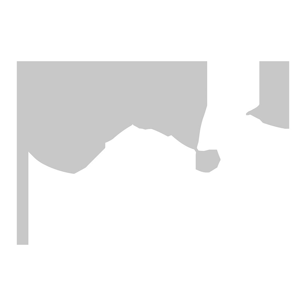 Taktur_magic Pferd negativ